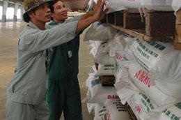 Nhập khẩu phân bón trong hai tháng tăng tới 76,03% so với cùng kỳ.