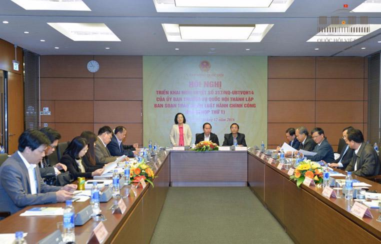 Đại biểu Quốc hội Trần Thị Quốc Khánh phát biểu trong một phiên họp của ban soạn thảo dự án Luật Hành chính công.