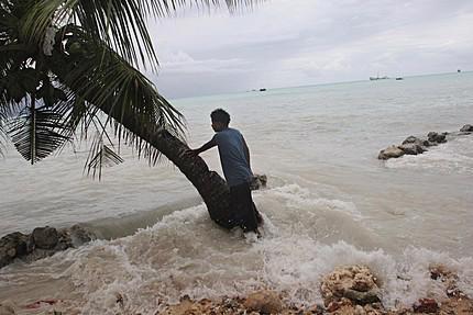 Nước biển dâng cao 1m sẽ làm giảm 2% GDP của các quốc gia khu vực Đông Á do thiếu nước ngọt; hoạt động trong lĩnh vực nông nghiệp ngư nghiệp và hoạt động du lịch bị ảnh hưởng.