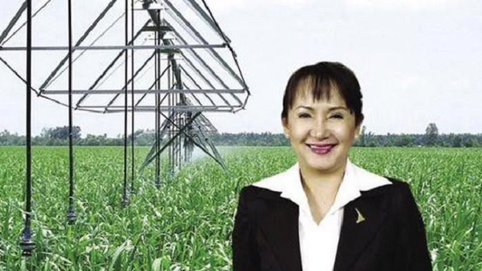 Bà Huỳnh Bích Ngọc giữ chức vụ Chủ tịch Hội đồng quản trị SBT từ ngày 28/10/2019.