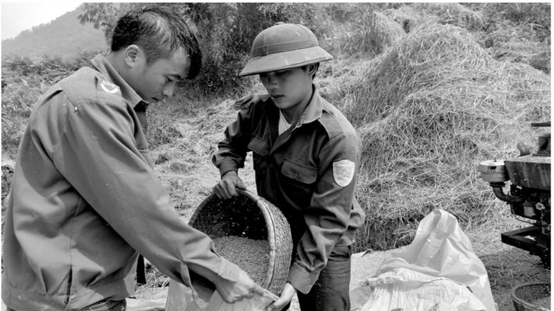 Mỗi năm, Việt Nam đáp ứng khoảng 50% nhu cầu nhập khẩu gạo của Trung Quốc, tương đương 35% kim ngạch xuất khẩu gạo của Việt Nam.