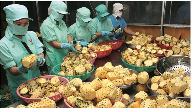 Chế biến là khâu then chốt giúp gia tăng giá trị nông sản.