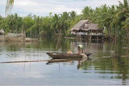 """""""Phát huy lợi thế sông biển, phát triển kinh tế bền vững vùng đồng bằng sông Cửu Long"""" là chủ đề của MDEC năm nay."""