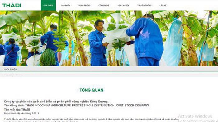 Trang web của Công ty sản xuất chế biến và phân phối nông nghiệp Thadi.