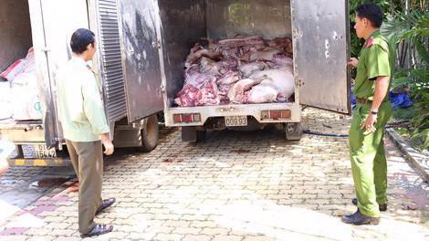Xử lý nghiêm các trường hợp vận chuyển, buôn bán động vật, sản phẩm động vật trái phép ra, vào Việt Nam. Ảnh minh hoạ