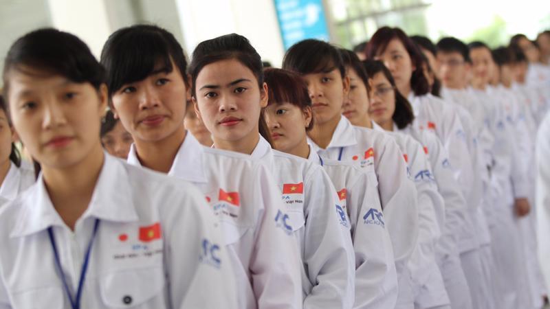 Doanh nghiệp bị đình chỉ sẽ không được thực hiện hoạt động đưa thực tập sinh sang làm việc và học tập tại Nhật Bản. Ảnh minh họa.