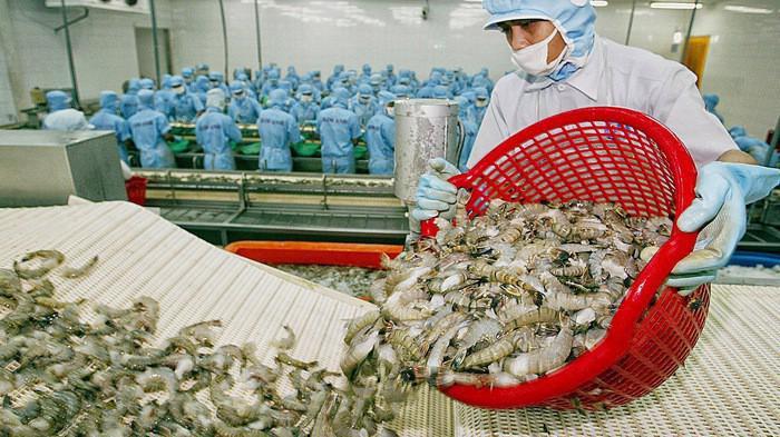 Mỹ công bố thuế chống bán phá giá tôm Việt Nam còn 0%.