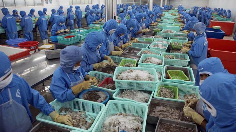 Hiện Trung Quốc đang tăng nhập khẩu tôm để phục vụ Tết âm lịch