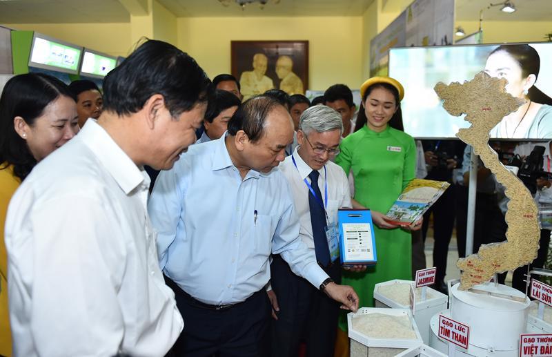 Thủ tướng yêu cầu ngành lúa gạo Việt Nam cần một tầm nhìn mới, một tầm nhìn đi kèm với hoạch định chiến lược, phù hợp với xu thế toàn cầu hóa.