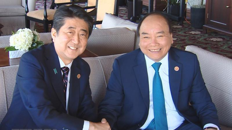 Thủ tướng Nguyễn Xuân Phúc và Thủ tướng Nhật Bản Shinzo Abe gặp song phương ngày 9/6 - Ảnh: TTXVN.
