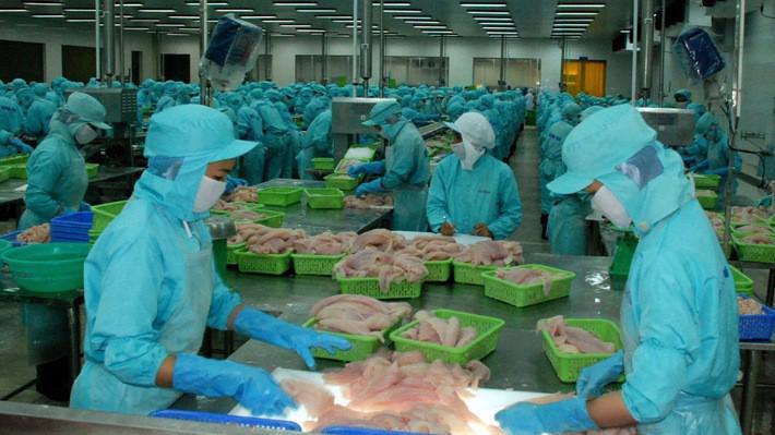 Thủ tướng yêu cầu thường xuyên tổ chức rà soát, loại bỏ các sản phẩm thủy sản kém chất lượng, không an toàn ra khỏi Danh mục các sản phẩm được phép lưu hành.