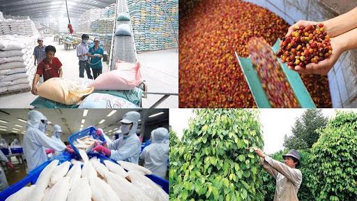Giải pháp chung để hoàn thành mục tiêu trên là rà soát, hoàn thiện thể chế, chính sách xuất khẩu nông lâm thủy sản; tiếp tục thực hiện và hoàn thiện chính sách thúc đẩy xuất khẩu nông lâm thủy sản.