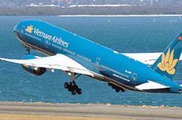 Trong 9 tháng đầu năm 2010, Vietnam Airlines chiếm gần 50% thị phần trên các đường bay thẳng giữa Việt Nam và Nhật Bản trên tổng số 3 hãng đang khai thác tuyến bay này.