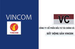 Cách đây 7 tháng, Vicoland với tên cũ là Vincon đã bị Công ty Cổ phần Vincom phát đơn khởi kiện vì cho rằng Vincon đã vi phạm nghiêm trọng đến quyền sở hữu trí tuệ về nhãn hiệu và tên thương mại Vincom.