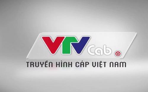 VTVcab đang là một trong hai công ty truyền hình trả tiền có số lượng thuê bao lớn nhất hiện nay.