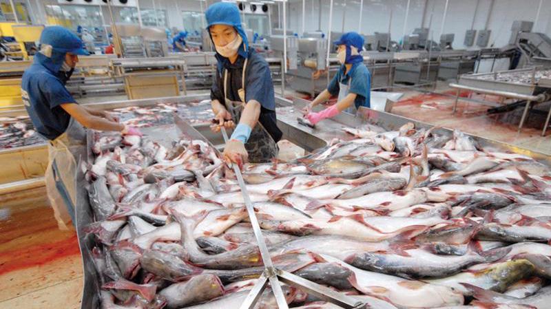 Trung Quốc siết chặt nhập khẩu thuỷ sản đông lạnh vì lo covid-19 bùng phát