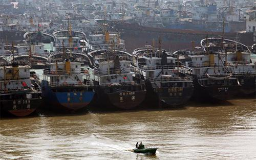 Chính phủ cũng quyết định hỗ trợ hàng năm 70% kinh phí mua bảo hiểm  thân tàu; 100% kinh phí mua bảo hiểm kết hợp con người cho thuyền viên  trên tàu khai thác hải sản xa bờ...