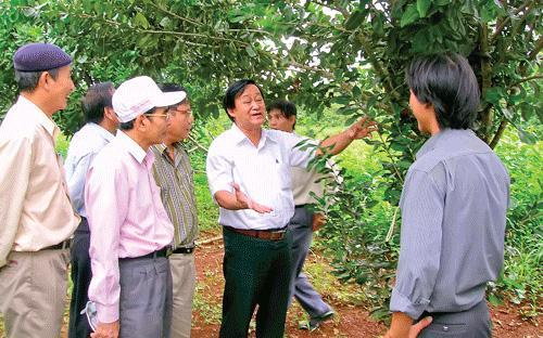 GS. Nguyễn Lân Hùng (áo trắng, ở giữa) trong một chuyến đi hướng dẫn kỹ thuật trồng mắc-ca cho nông dân tại Đắc Lắc.<br>