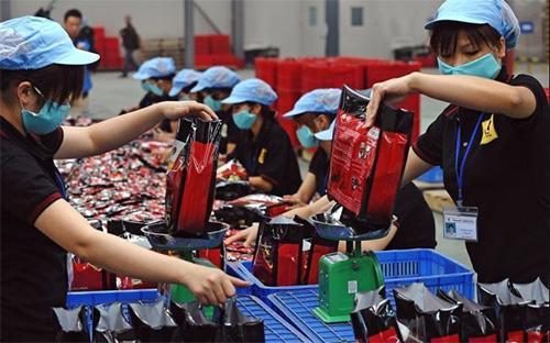 Các dòng vốn FDI đang bù đắp cho sức cầu nội địa yếu. Tuy nhiên, đây không phải là chiến lược lâu dài vì tiền lương, thế mạnh cạnh tranh chủ yếu của Việt Nam hiện nay, chắc chắn sẽ tăng và do đó làm mất đi tính cạnh tranh.