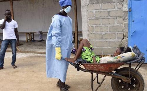 Nhân viên y tế gom bệnh nhân Ebola ở Libera - Ảnh: AFP/BBC.<br>