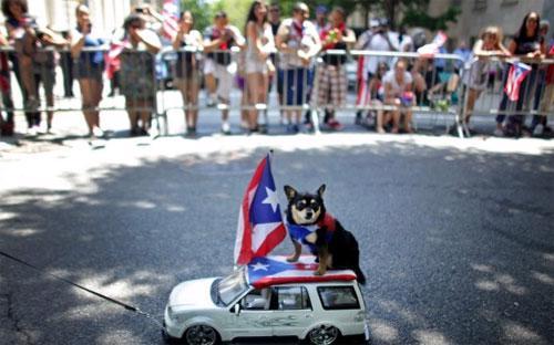"""Nhiều người gọi Puerto Rico là """"Hy Lạp của nước Mỹ""""."""