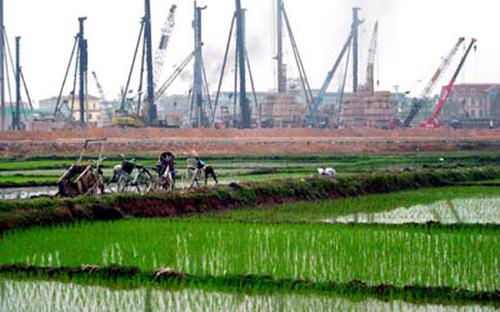 Mục tiêu của Chính phủ là giữ bằng được 3,8 triệu ha đất lúa.<br>