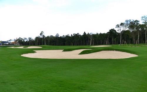 Sân golf trên đảo lớn nhất Việt Nam.