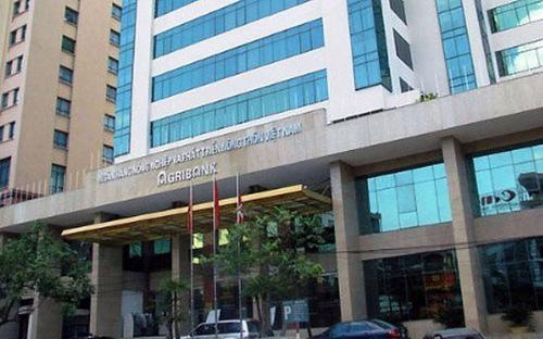 Thanh tra Chính phủ đã phát hiện nhiều sai phạm trong tổ chức quản lý, công tác giải ngân, thế chấp...tại Agribank.<br>