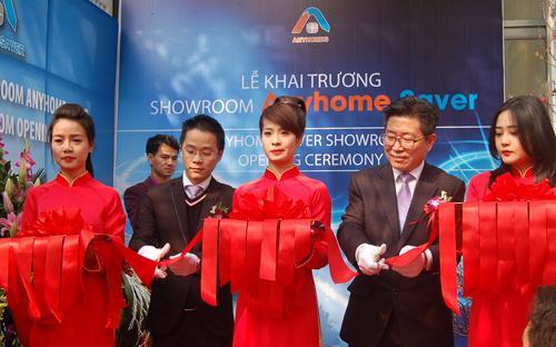 Cuối năm 2013, Anyhomes Asia đã chính thức nhập về Việt Nam 2.000  sản phẩm tiết kiệm điện mang tên Anyhome Saver để phục vụ cho việc khởi  động kế hoạch bán hàng.
