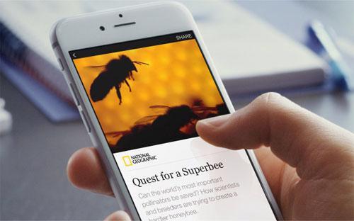 """Các đơn vị báo chí có thể tạo liên kết """"nhúng"""" hoặc bán quảng cáo trong  các bài viết và thu về toàn bộ doanh thu từ quảng cáo, hoặc cho phép  Facebook bán quảng cáo và mạng xã hội này sẽ giữ lại 30% lợi nhuận"""