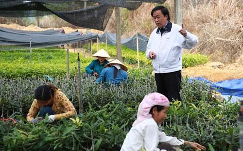 Theo GS. Nguyễn Lân Hùng, cây mắc-ca sẽ giúp các hộ dân ở Tây Nguyên xóa đói giảm nghèo và hướng tới làm giàu được.<br>
