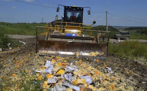 Nhà chức trách Nga tiêu hủy pho mát nhập trái phép từ châu Âu - Ảnh: Reuters.<br>
