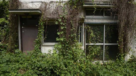 Ước tính của Chính phủ Nhật mới đây cho thấy hiện khoảng 8 triệu căn nhà đang không có người ở - Ảnh: Japan Times.<br>