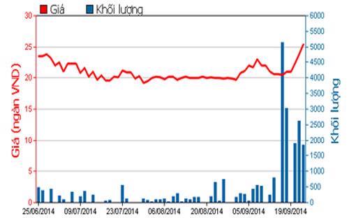 Diễn biến giá cổ phiếu SFC trong 3 tháng qua - Nguồn: HOSE.<br>