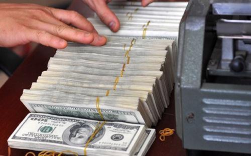 Mục đích vay được đề cập trong nghị quyết là để bổ sung vốn đầu  tư phát triển, bảo đảm an toàn tài chính tiền tệ quốc gia.