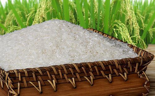 Đề án đặt ra mục tiêu đạt 50% sản lượng gạo xuất khẩu mang thương hiệu gạo Việt Nam,  trong đó 30% tổng sản lượng gạo xuất khẩu là nhóm gạo thơm và gạo đặc  sản.<br>