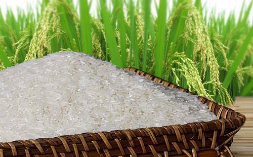 7 tháng đầu năm 2015, Việt Nam xuất khẩu 3,3 triệu tấn gạo, giảm 8,8% so với cùng kỳ.<br>