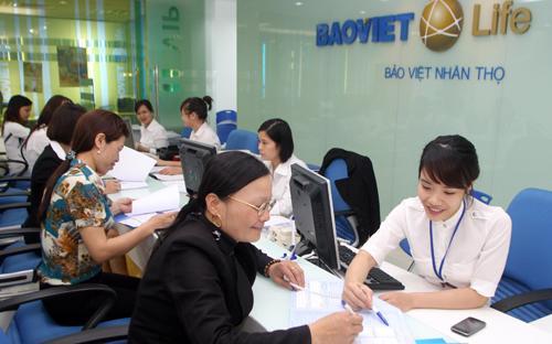 Năm 2013, mặc dù trong bối cảnh nền kinh tế khó khăn, Bảo Việt Nhân thọ  vẫn đạt doanh thu khai thác mới tăng trưởng 22% so với năm 2012.