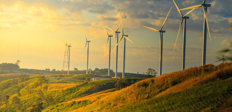 Công suất tăng mạnh ở nhóm năng lượng mặt trời trong khi nhu cầu tiêu thụ điện còn thấp do dịch Covid 19 khiến dư thừa nguồn cung.