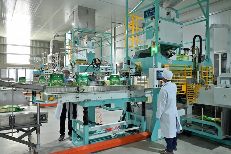 PAN cho biết, tăng trưởng doanh thu quý 1/2021 chủ yếu đến từ mảng tôm xuất khẩu (tăng 36%), giống, nông sản (tăng 11%), bánh kẹo (tăng 63%) và cà phê (tăng 41%).