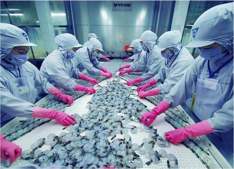 Tháng 4/2021, FMC, bao gồm Khang An Co. chế biến 1.575 tấn tôm thành phẩm, bằng 131% so cùng kỳ năm trước.