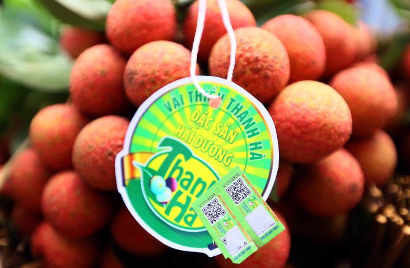 Tỉnh Hải Dương mong muốn đưa quả vải thiều và nông sản Hải Dương đi xa tới nhiều phân khúc thị trường trong nước và quốc tế.
