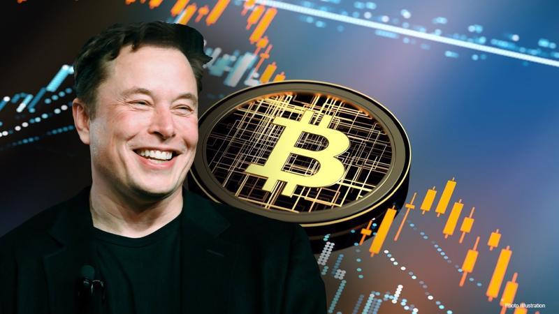 Tỷ phú Elon Musk - Ảnh: Innovation Village