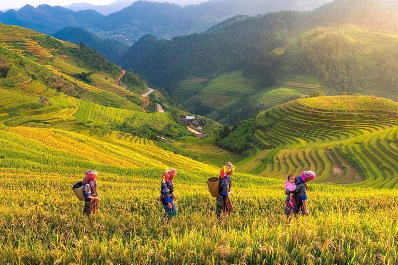 Dịch vụ du lịch có bước tăng trưởng mạnh, trở thành ngành kinh tế chủ lực của tỉnh.