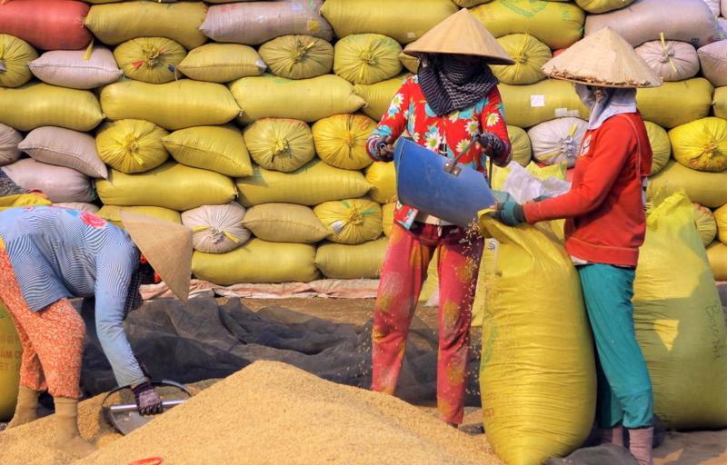Dịch bệnh tái phát tại Châu Á làm cản trở hoạt động của chuỗi cung ứng.