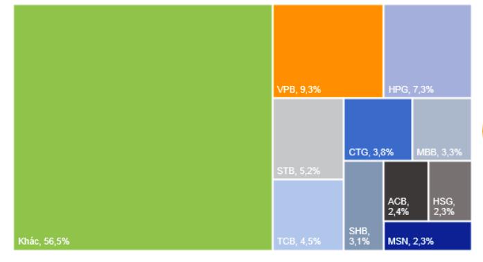 Top 10 cổ phiếu có mức thanh khoản cao nhất thị trường 5 tháng 2021. Nguồn: VnDirect.