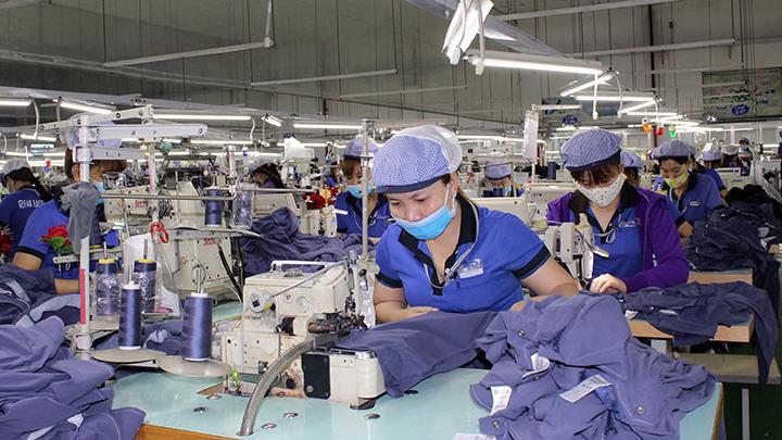 Doanh nghiệp được quyền lựa chọn nguồn hàng nhập khẩu để sản xuất phục vụ xuất khẩu.