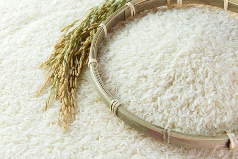Mỗi năm EU sẽ nhập khẩu 80.000 tấn gạo của Việt Nam theo quy định mới.