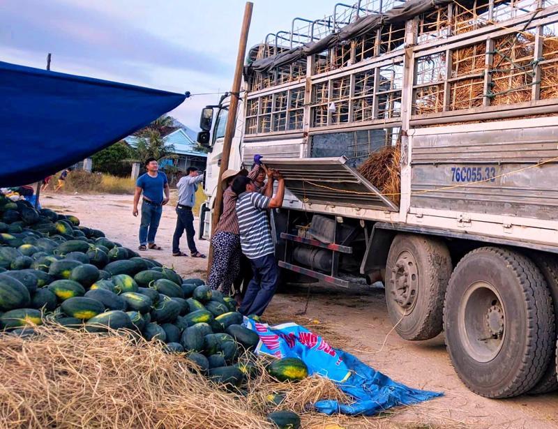 Nhiều loại nông sản đang cần tiêu thụ