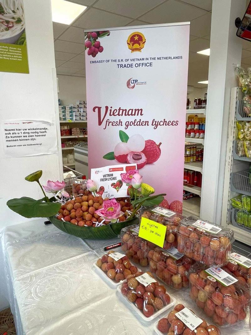 Vải thiều được giới thiệu tại siêu thị Thanh Hùng (Hà Lan)
